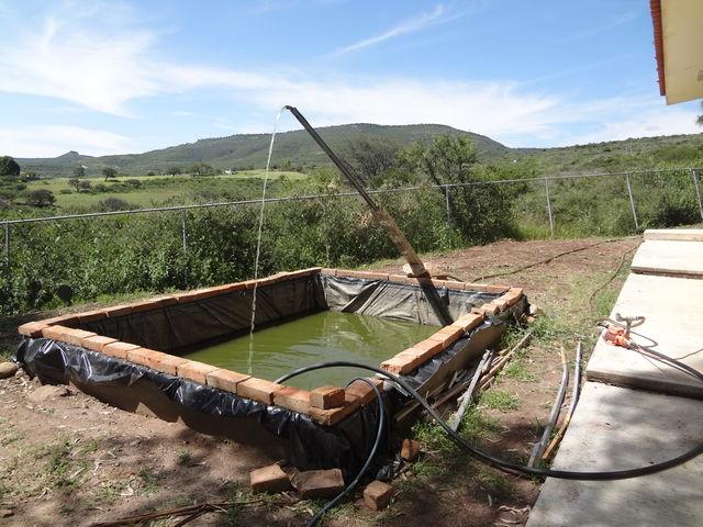 Pila para cria de peces telesecundaria las bocas huej car for Peces para criadero